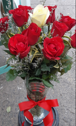 A Doz of Red Roses
